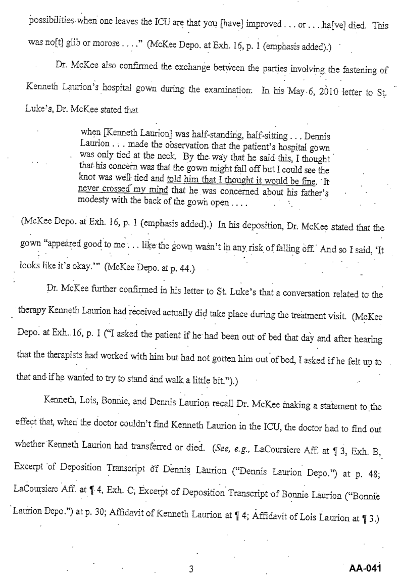 Document-2011-01-31-Laurion-Supplemental-Memo-For-Summary-Judgment-3
