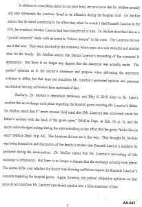 Document-2011-01-31-Laurion-Supplemental-Memo-For-Summary-Judgment-5