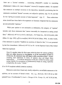 Document-2011-08-05-McKee-Brief-To-Court-Of-Appeals-31